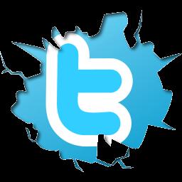 twitter-logo-enelpc